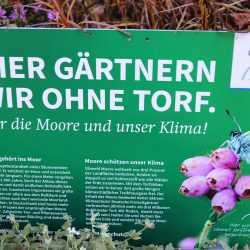 Gärtnern ohne Torf schützt die Umwelt : Zinzendorfschulen bekommen NABU-Plakette